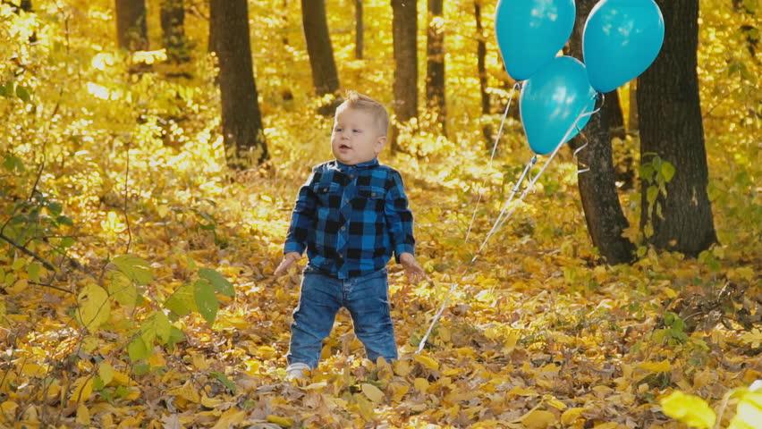 Little boy in the autumn forest | Shutterstock HD Video #1020987385