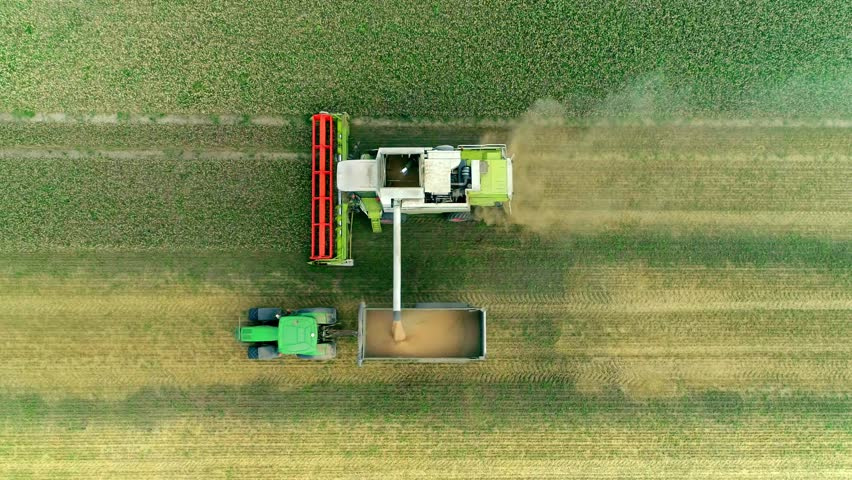 Harvesting on the wheat field Combine and Tractor Agriculture Machinery Technology Food Modification Crop Farming Concept Royalty-Free Stock Footage #1020999505