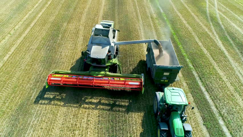 Harvesting on the wheat field Combine and Tractor Agriculture Machinery Technology Food Modification Crop Farming Concept Royalty-Free Stock Footage #1020999508