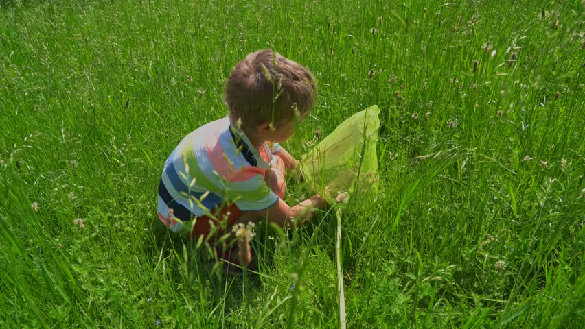Boy with net catching butterfly and having fun on the green meadow in sunny day | Shutterstock HD Video #1021145056