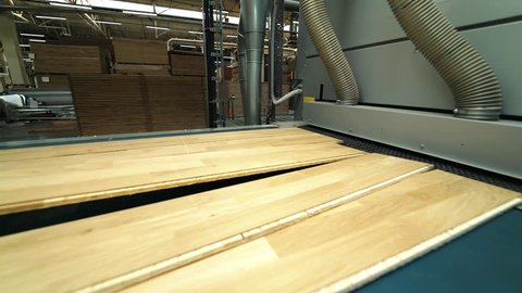 Modern parquet grinding technology at a woodworking factory. The process of processing uneven boards. Line of manufacturing. Close-up
