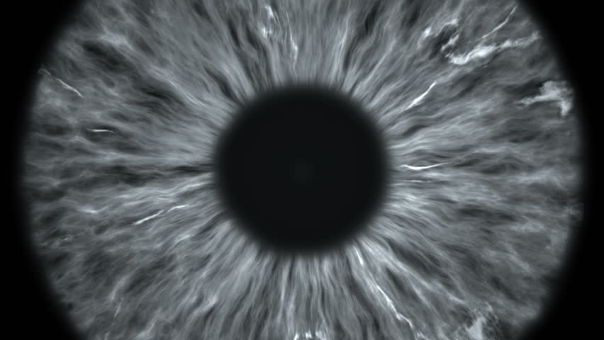 The gray eye is an extreme close-up of the iris and pupil, widening and tapering. | Shutterstock HD Video #1021392043