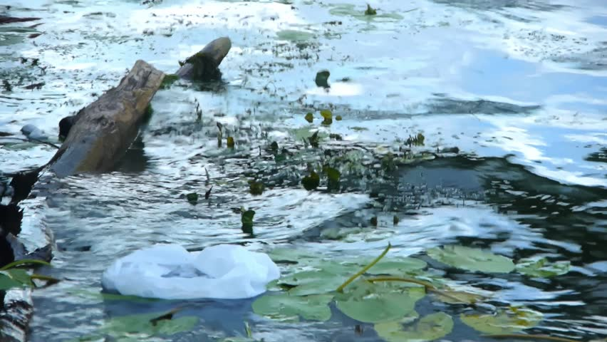 Dirty water, pollution of rivers, destruction of the environment | Shutterstock HD Video #1021426165