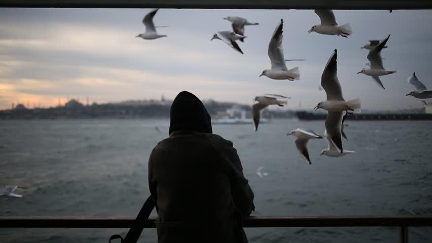 Istanbul Seagull Ferry | Shutterstock HD Video #1021432798