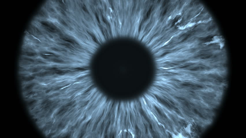 The gray eye is an extreme close-up of the iris and pupil, widening and tapering. | Shutterstock HD Video #1021684813