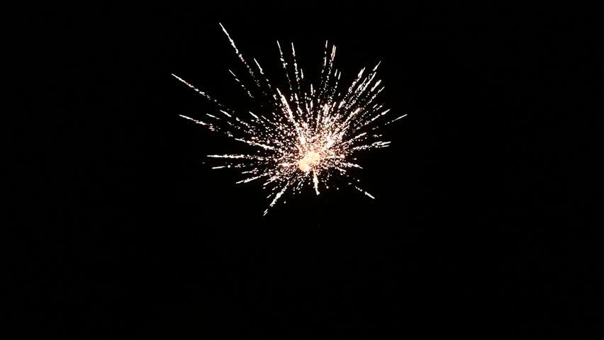 Fireworks on black night sky in slow motion. | Shutterstock HD Video #1021691845