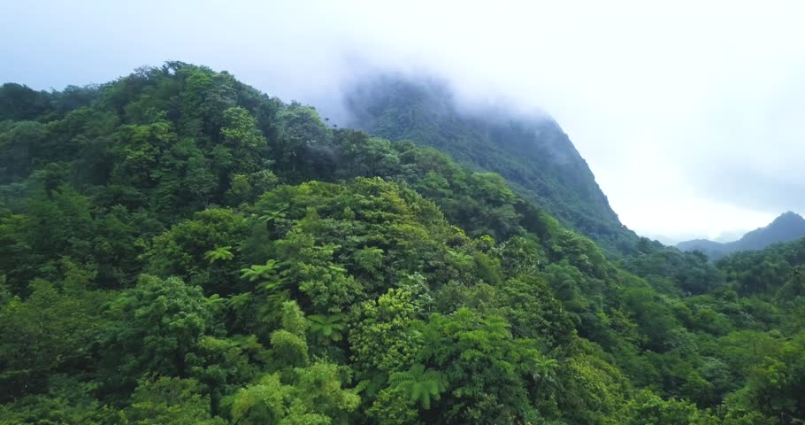 Drone view of a tropical rainforest mountain with clouds and mist | Shutterstock HD Video #1021829020