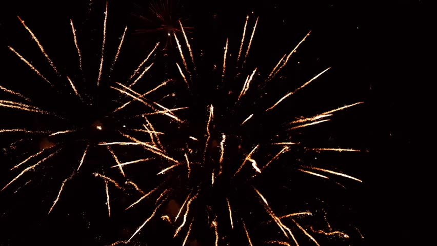 Colorful fireworks in the sky | Shutterstock HD Video #1021937047