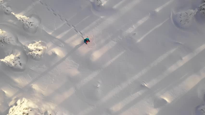Aerial crossing of snowshoe walker in winter forest #1021937074
