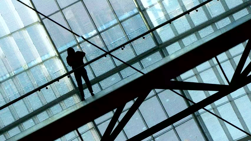 Silhouettes of People inside the structure of financial company or public place with large glass windows. Contrast background | Shutterstock HD Video #1021984663