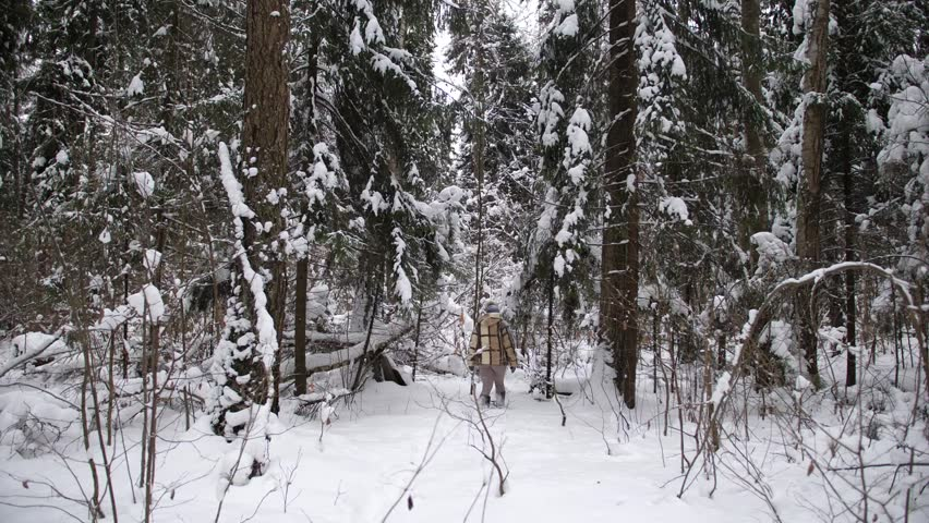 Walk along a beautiful snowy road! | Shutterstock HD Video #1022097340