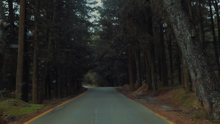 Driving on forest on first snowing day of the year slow motion.Pov shot of light snow falling for the first time while entering a natural forest park with tall trees