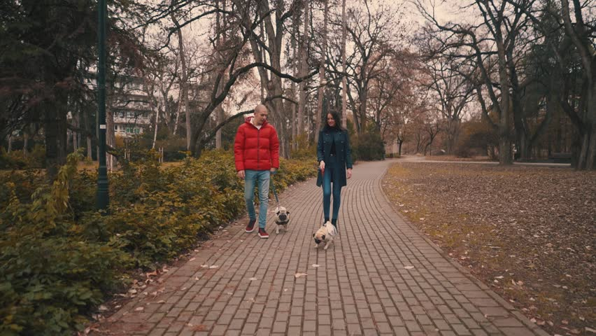 Beautiful young man and woman in park with their Pug dogs walking | Shutterstock HD Video #1022595133