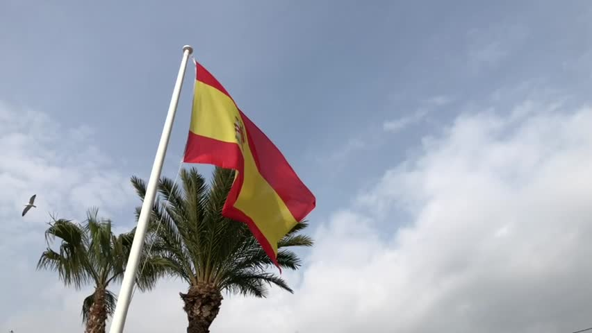 Slow motion Spain Spanish flag flying in the wind with a palm tree clouds and birds in the background, Europe footage spanish flag