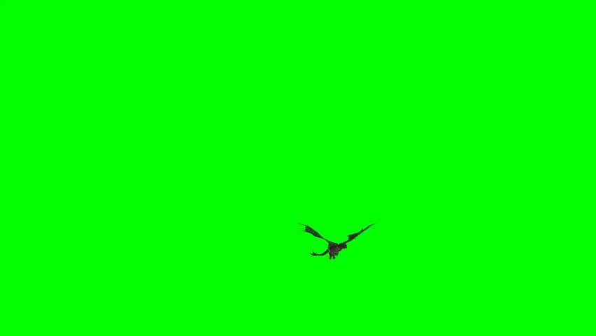 Dragon - middle ages fantasy dragon flies on green screen