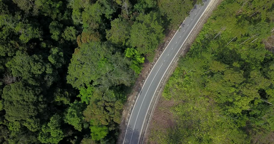 aerial view of little traffic road among green forrest #1022869750