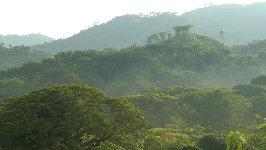 Beautiful mountainous scenery with bird flying away far in the distance | Shutterstock HD Video #1022951932