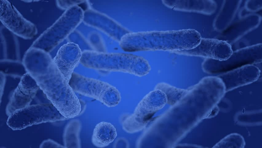 Bacteria in blue are moving. 3D Render