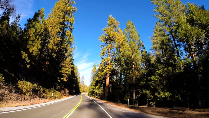 POV drive along Route 108 tree lined Mountain Pass Sierra Nevada Wilderness area California USA | Shutterstock HD Video #1023151072