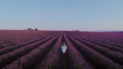 Romantic, dreamy and inspiring wanderlust drone video of free and happy young woman in flowing white traditional dress, blogger or model run in pink and purple lavender fields at sunset