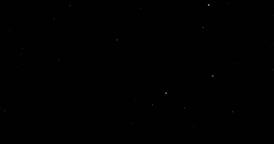 Snowfall on a black background | Shutterstock HD Video #1023352144