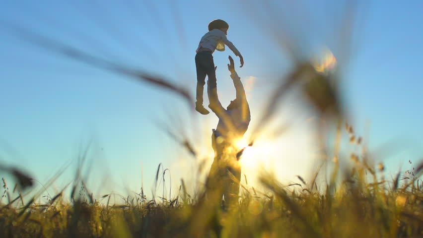 silhouette of father and son playing enjoying sunset in wheat field in nature on summer day. happy family walking outdoors. Little boy and father man having fun tossing up throwing son in air children Royalty-Free Stock Footage #1023362620