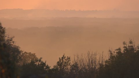 trees and landscape in haze, countryside. Autumn season, evening. Ukraine. Europe.