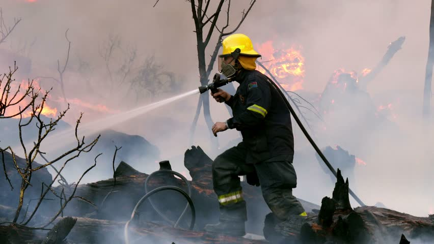 Fire fighter in yellow hat with smoke filter sprays water & carefully treads forward over black charred tree trunks as strong flames & reddened smoke rise from burning bush behind him, close up pan | Shutterstock HD Video #1023467281
