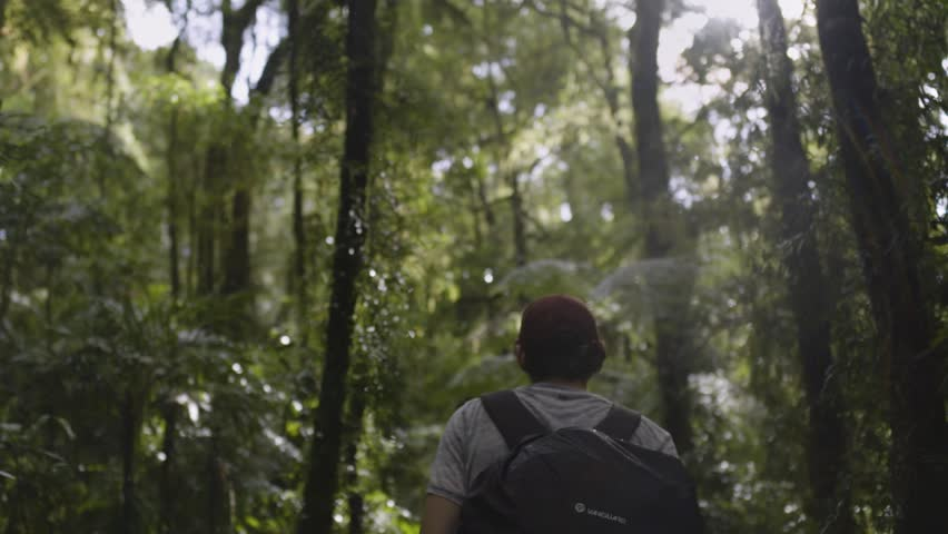 Fraser Island, QLD / Australia - 11.16.19: A Slow Motion Shot Of Young Traveller /  Hiker Walking Through The Rainforest, In Slow Motion