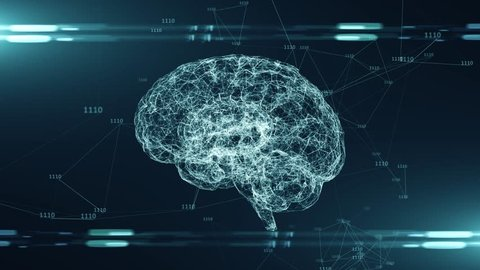 Brain Stock Video Footage 4k And Hd Video Clips Shutterstock