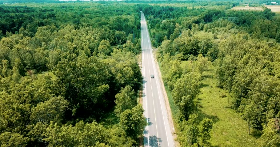 Wide shot aerial drone footage tracking a sedan car cruising on an empty road surrounded by a beautiful large forest and river.
