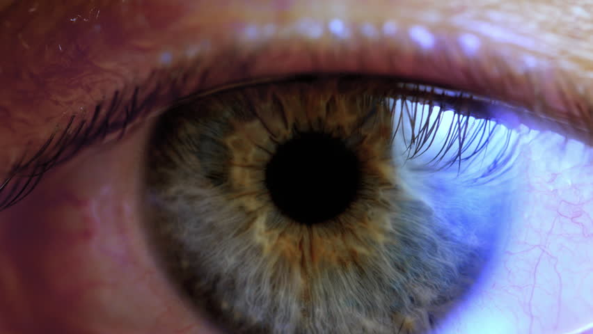 Human eye iris contracting. Extreme close up.  #1023881380