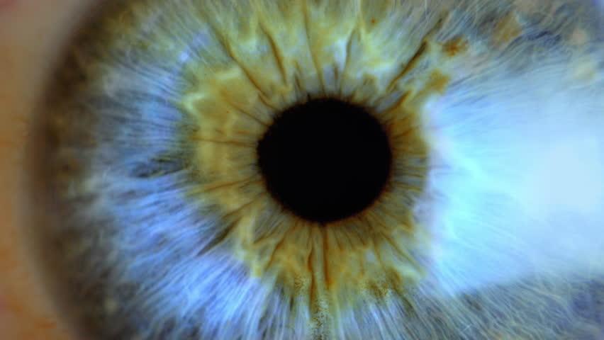 Extreme close up human eye iris  | Shutterstock HD Video #1024275110