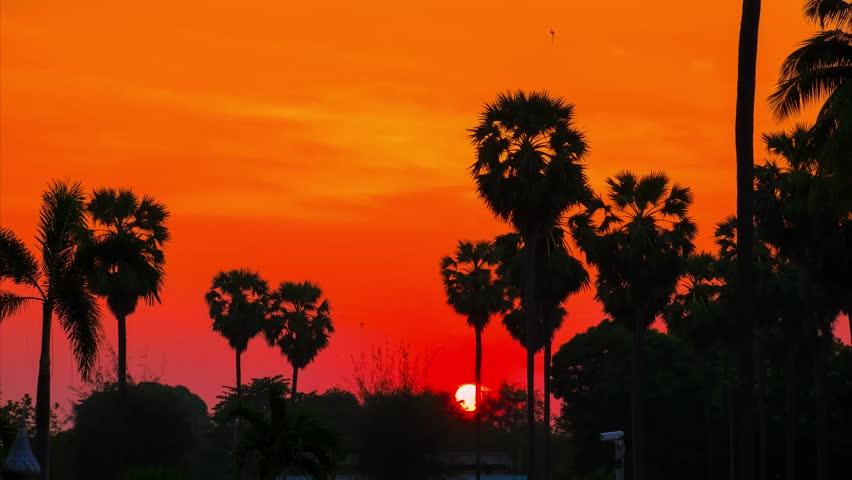 4K timelapse video of sunrise in Sattahip city, Chonburi Thailand.   Shutterstock HD Video #1024347173