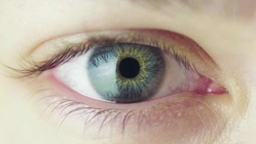 Beautiful Blue Eye of Young Woman Opening Up And Closing. Pupil Constriction Process. Slow Motion Blinking Human Eye. | Shutterstock HD Video #1024435757