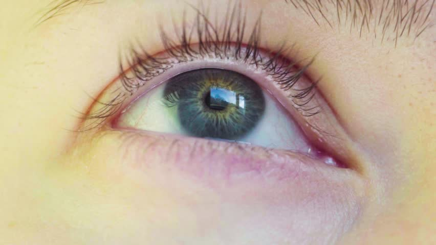 Blue Eye of a Beautiful Young Woman Looking Window. Sunny Day Outside the Window Reflected in Eyeball. One Blinking. Macro View. Slow motion | Shutterstock HD Video #1024435808