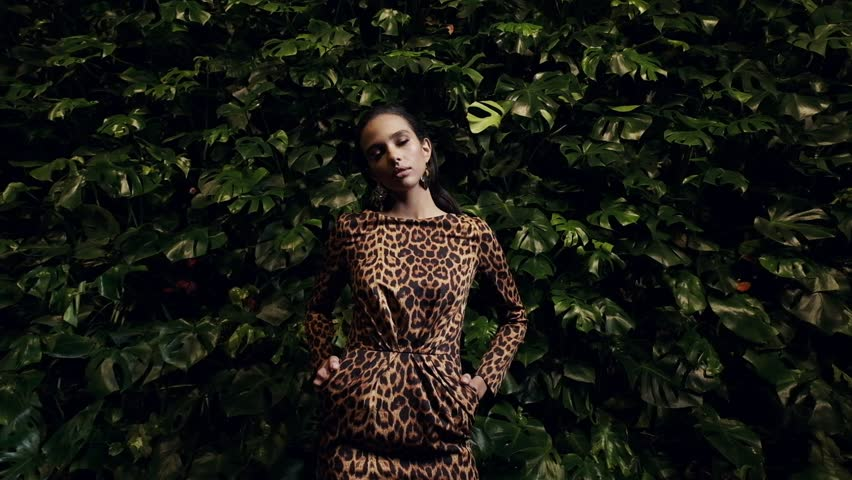 Portrait Of An Elegant Young Woman. Leopard Dress. Slow Motion.