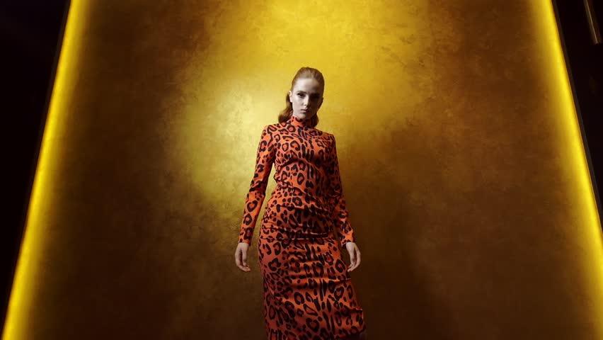 Cute Fashion Model Posing On A Gold Background. Woman In Orange Black Dress. | Shutterstock HD Video #1024436450
