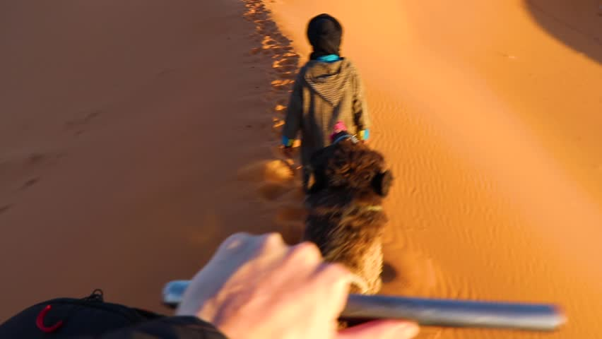 POV style camera shot of camel ride while on vacation
