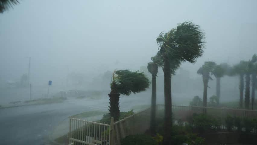 Hurricane Michael Eyewall Winds Royalty-Free Stock Footage #1024581350