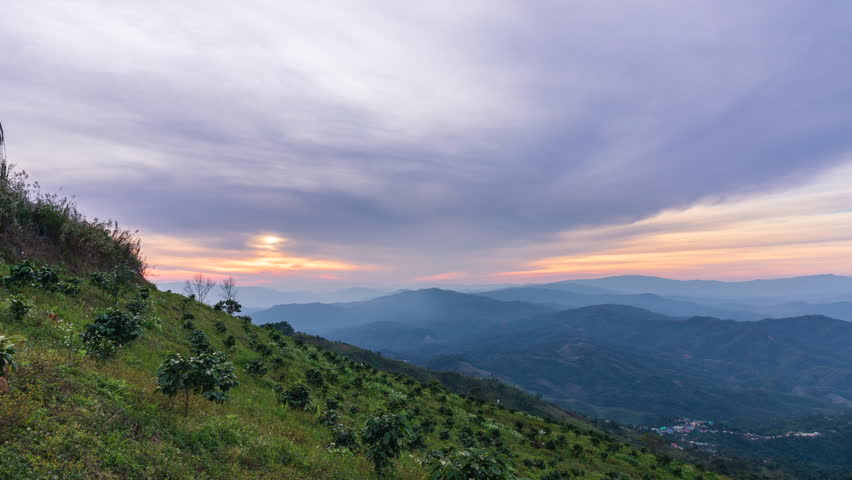Time lapse of sunset and flowing clouds panoramic view with coffee tree at Chiang Rai province northern of Thailand | Shutterstock HD Video #1024618610