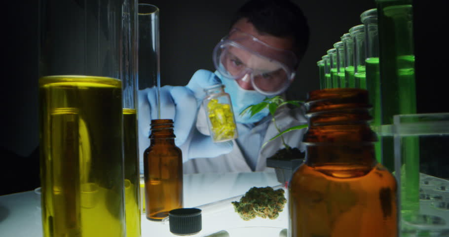 Slow motion of scientist with mask, glasses and gloves checking and analizing capsules of  biological and ecological hemp plant used for herbal pharmaceutical cbd oil in a laboratory.