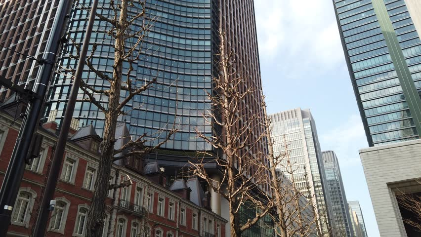 TOKYO JAPAN. 2019 Mar 1st. Walking in Otemachi, Largest Business district in Tokyo   Shutterstock HD Video #1025049269