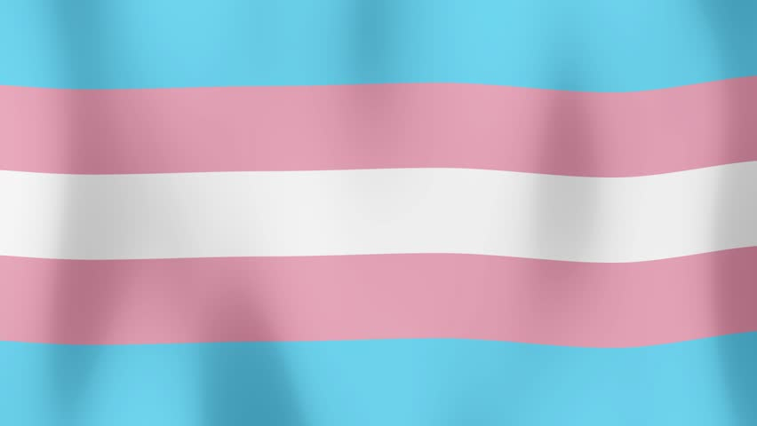 Video transsex Free Transexual
