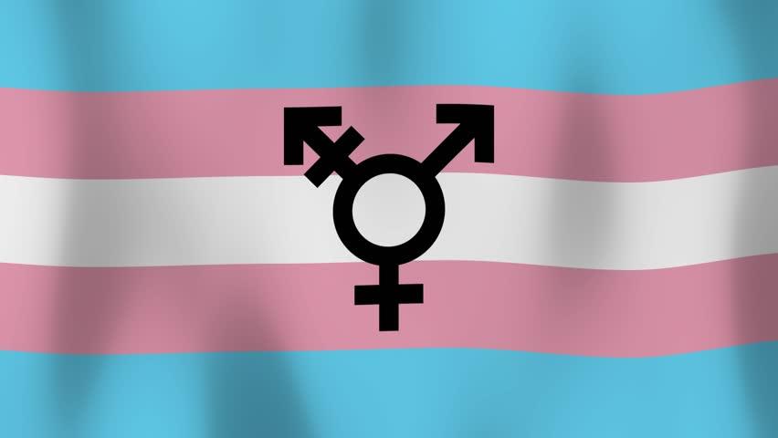 Video transsex Shemale XXX