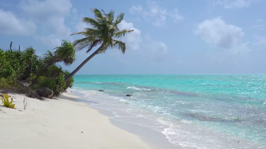 Tropical Sandy Beach of the Deserted Island Innafushi in Baa Atoll, Maldives   Shutterstock HD Video #1025163665