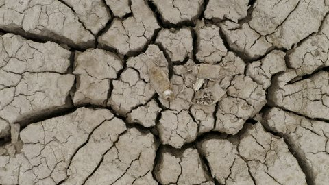 4K aerial zoom out view of dead fish lying on the cracked mud surface of a dry dam due to drought from climate change and global warming