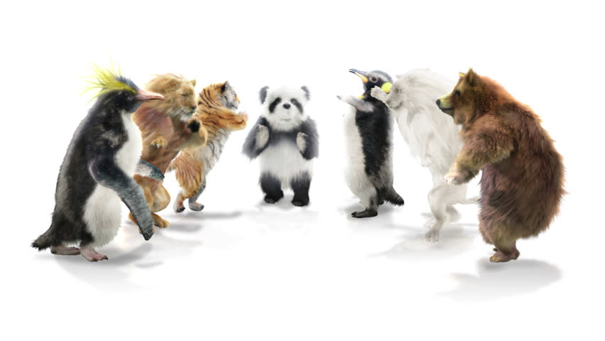 Panda tiger penguin penguins White lion bear CG fur 3d rendering animal realistic CGI VFX Animation  Loop Alpha channel dance composition 3d mapping cartoon, With Alpha Channel
