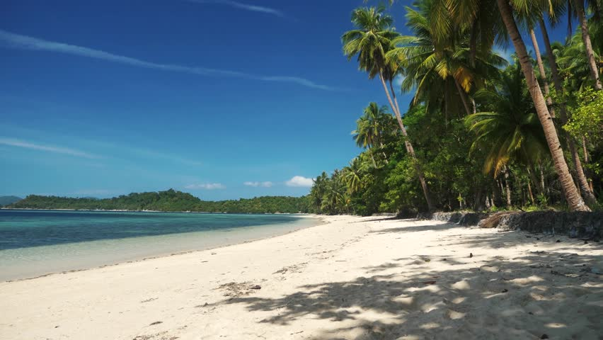 Beautiful tropical beach with white sand clear water and many palm trees in the philippines.   Shutterstock HD Video #1025293994
