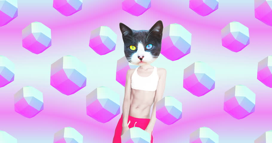 Minimal motion gif art. Beach Party style Dj Kitty. Funny animation modern design #1025361299